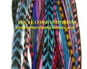 Grizzly Rooster Feathers for sales at Whole sale prices