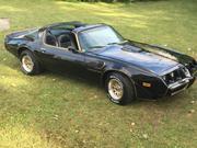 1981 Pontiac 301 Pontiac: Trans Am Trans Am